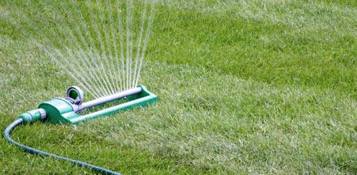 podlewanie ogrodów