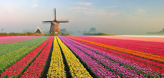 holandia-widok-wakacje